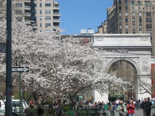 Washington_Square1